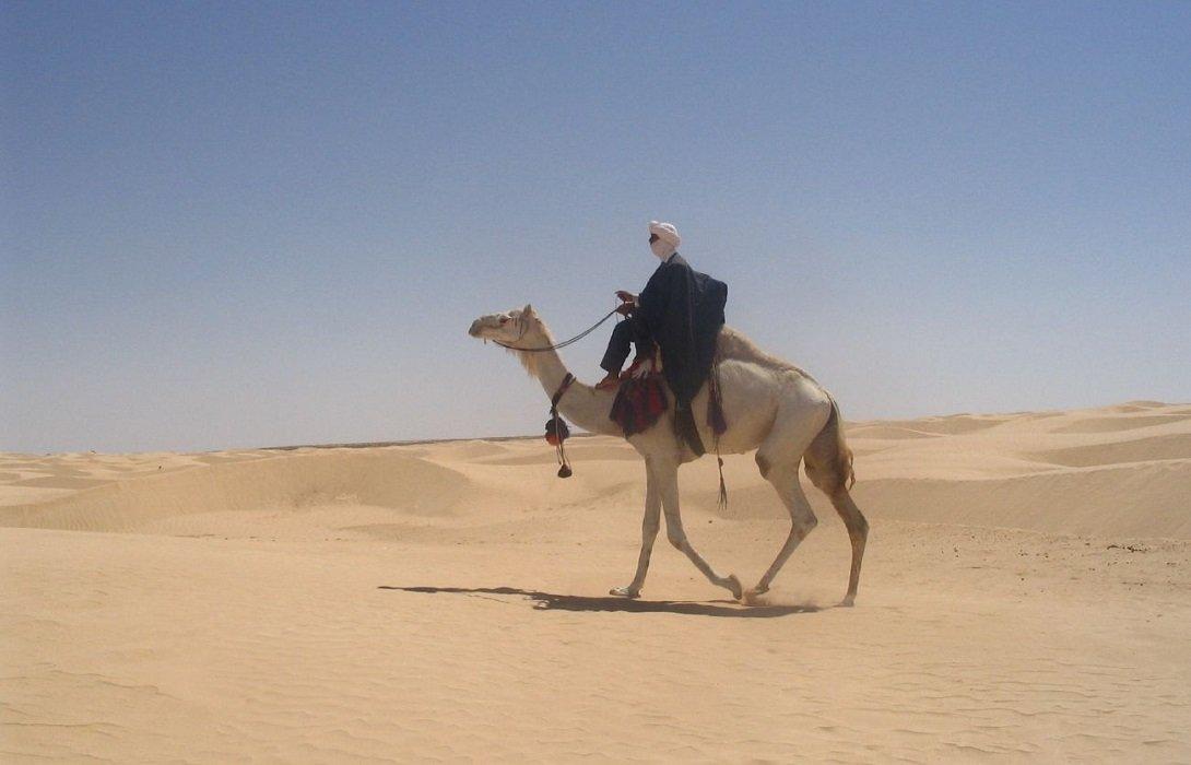 Гигантская солнечная ферма в пустыне Туниса