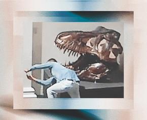 В Австралии мужчина проник в музей, чтобы сделать селфи с динозавром