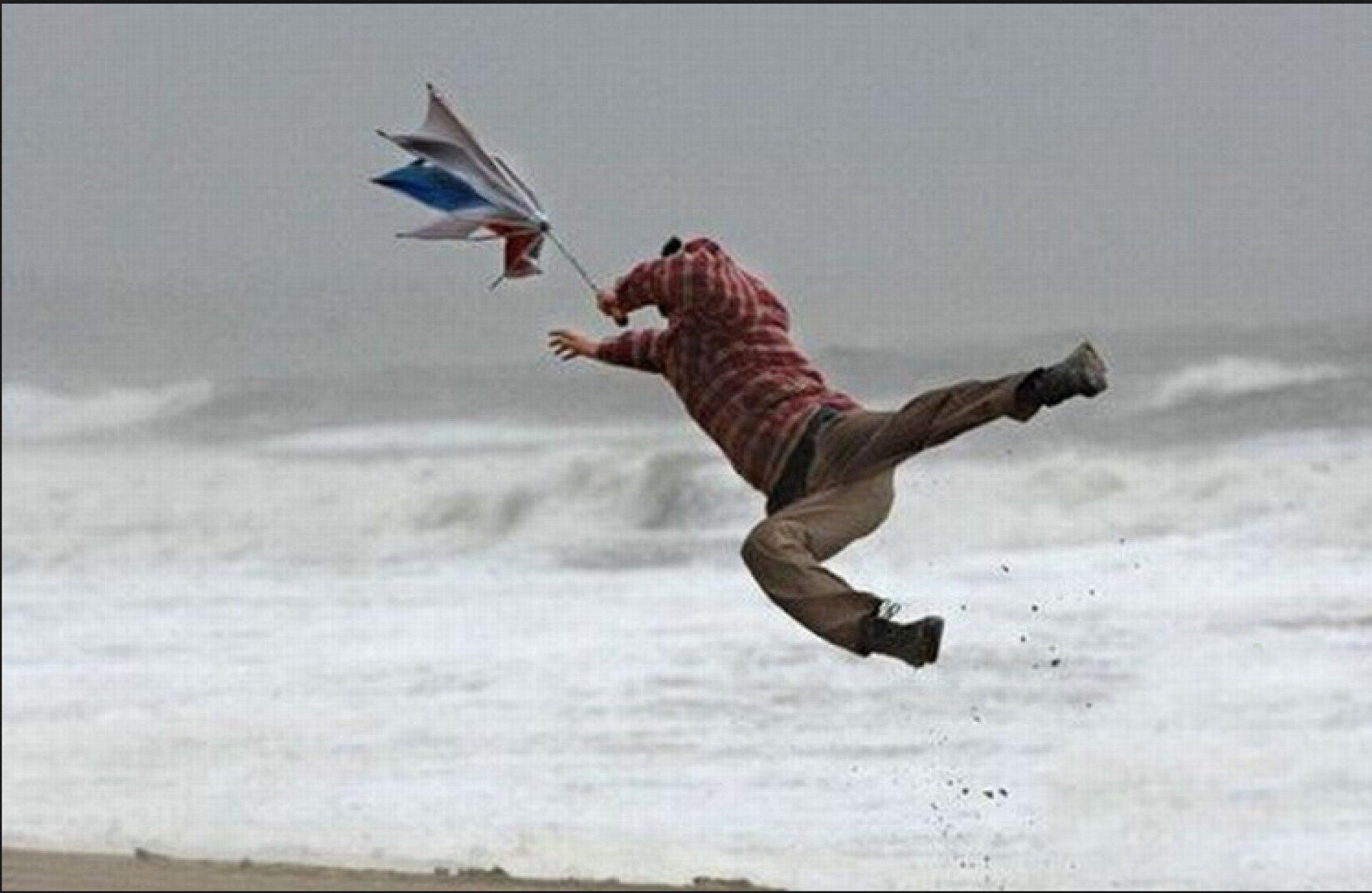 картинка сильный ветер прикол его слова многом