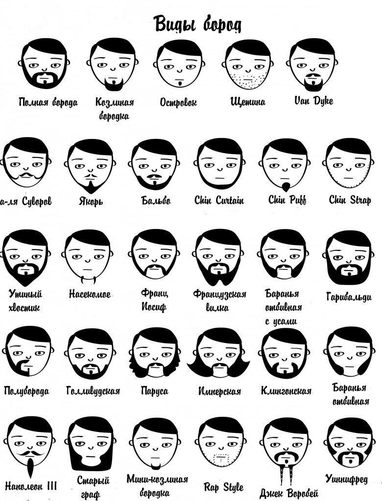 виды бород
