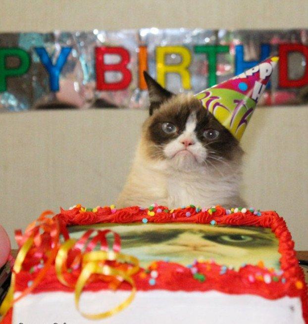 grumpy cat birthday1570335543